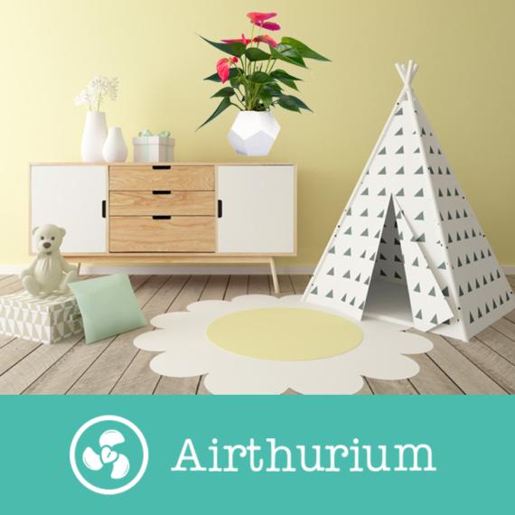 Airthurium